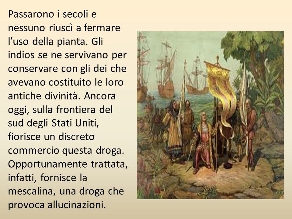 Passarono i secoli e nessuno riuscì a fermare l'uso della pianta