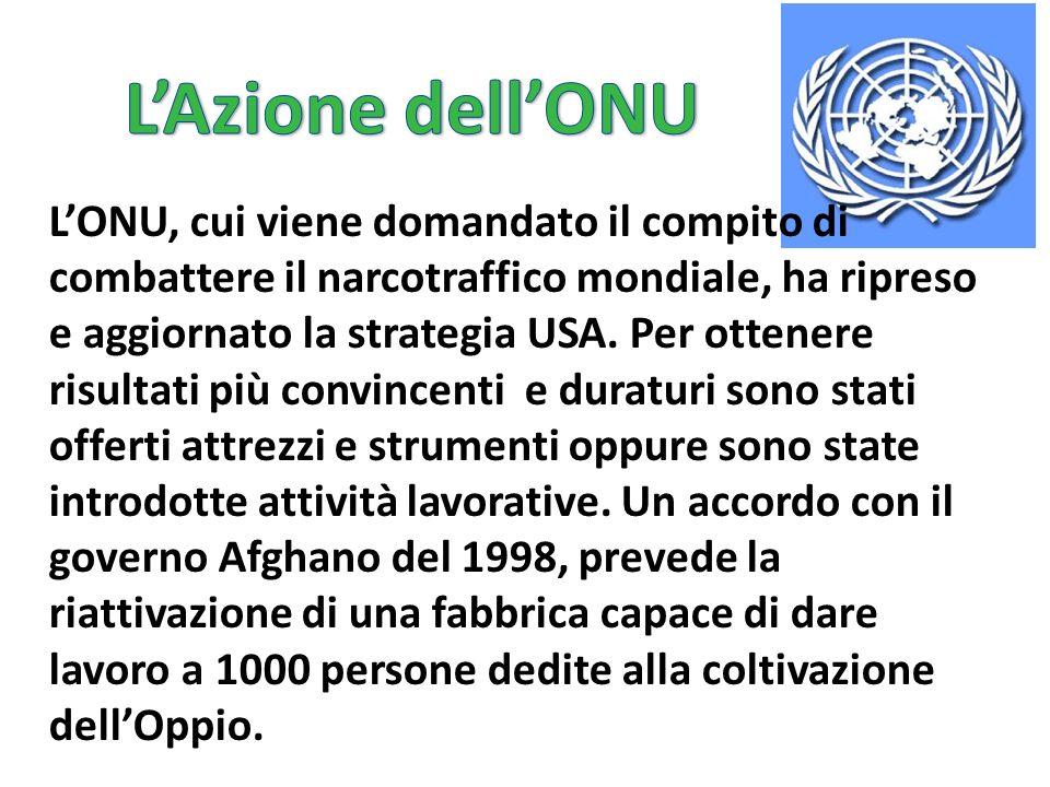 L'Azione dell'ONU