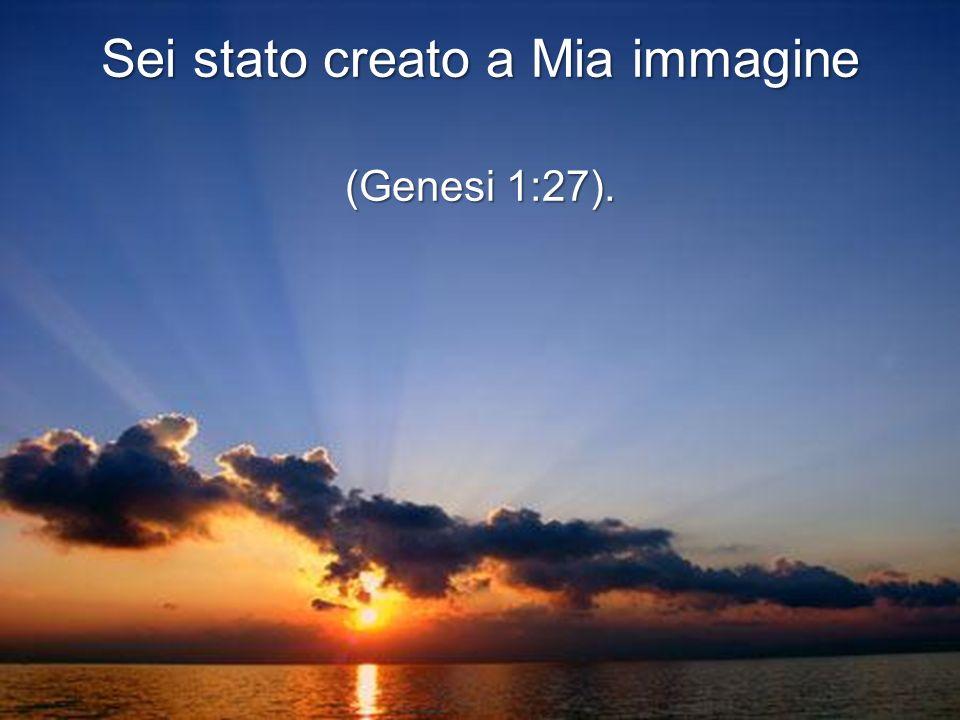 Sei stato creato a Mia immagine