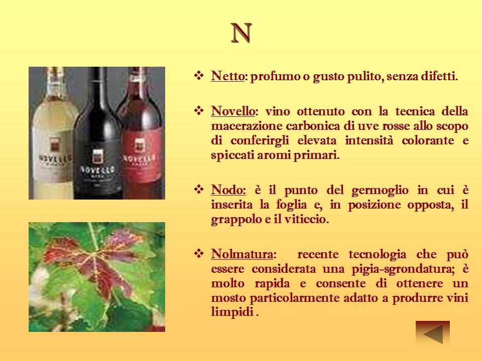 N Netto: profumo o gusto pulito, senza difetti.