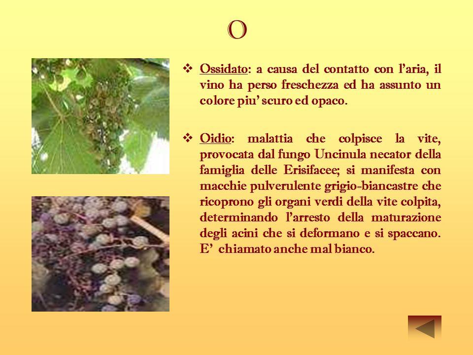 O Ossidato: a causa del contatto con l'aria, il vino ha perso freschezza ed ha assunto un colore piu' scuro ed opaco.