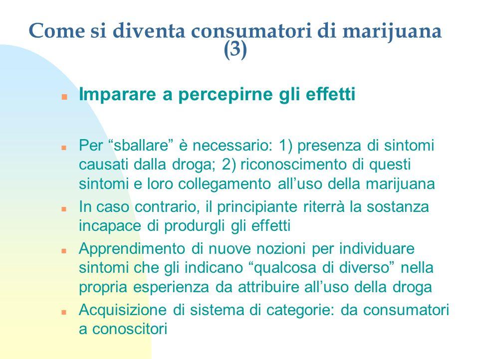 Come si diventa consumatori di marijuana (3)