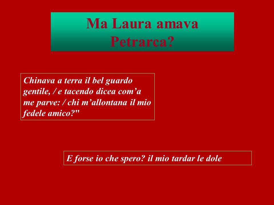 Ma Laura amava Petrarca