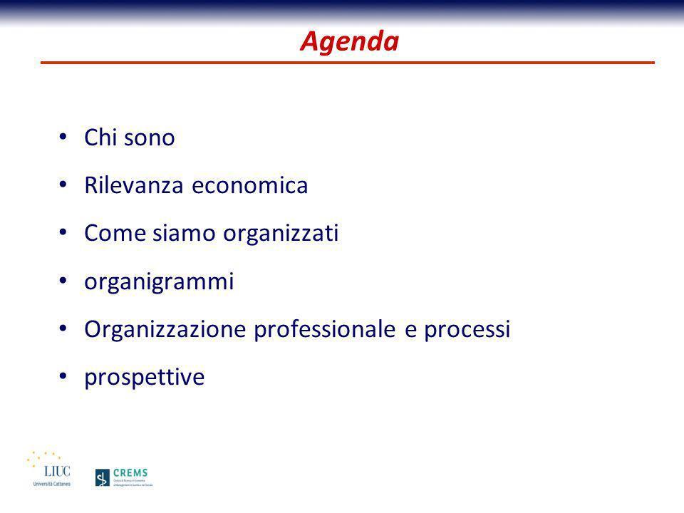 Agenda Chi sono Rilevanza economica Come siamo organizzati