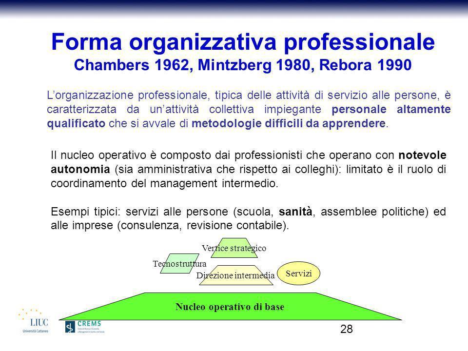 Forma organizzativa professionale