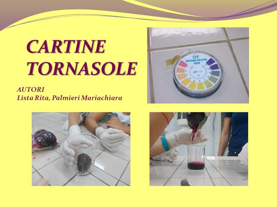 CARTINE TORNASOLE AUTORI Lista Rita, Palmieri Mariachiara