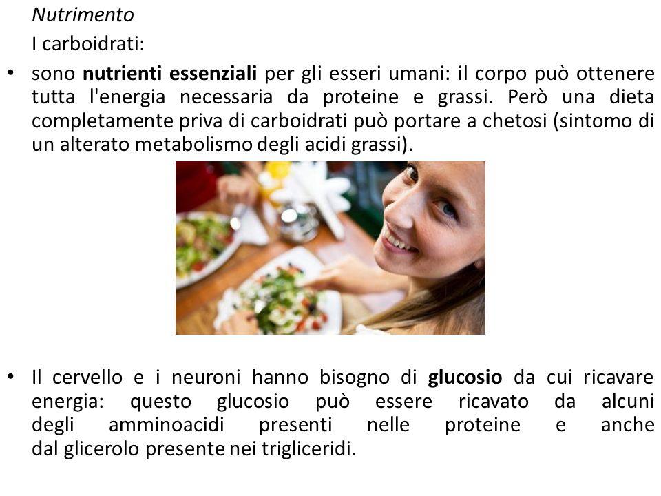 Nutrimento I carboidrati: