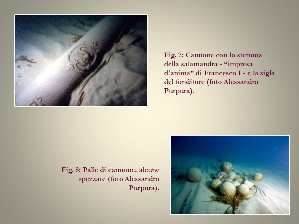 Fig. 7: Cannone con lo stemma della salamandra - impresa d anima di Francesco I - e la sigla del fonditore (foto Alessandro Purpura).