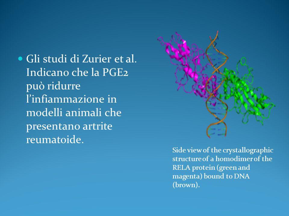 Gli studi di Zurier et al