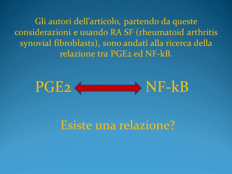 PGE2 NF-kB Esiste una relazione