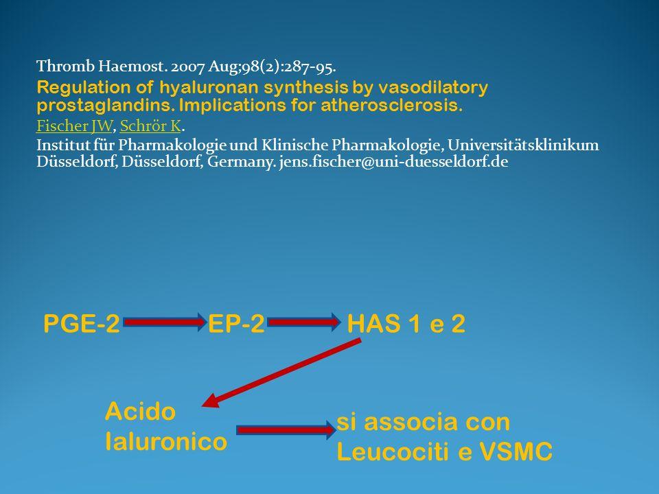 si associa con Leucociti e VSMC