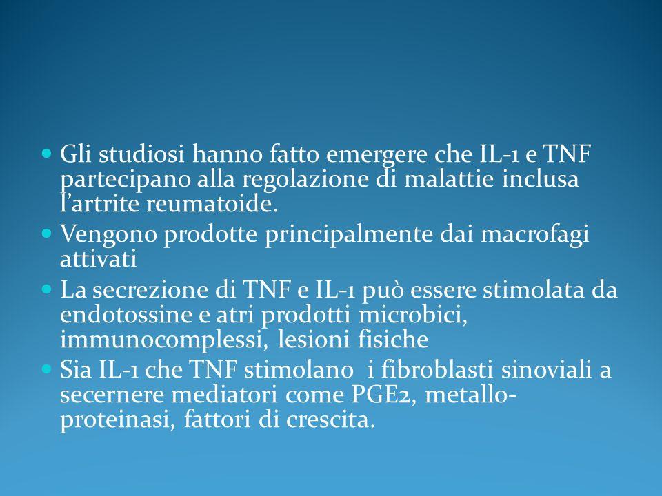 Gli studiosi hanno fatto emergere che IL-1 e TNF partecipano alla regolazione di malattie inclusa l'artrite reumatoide.