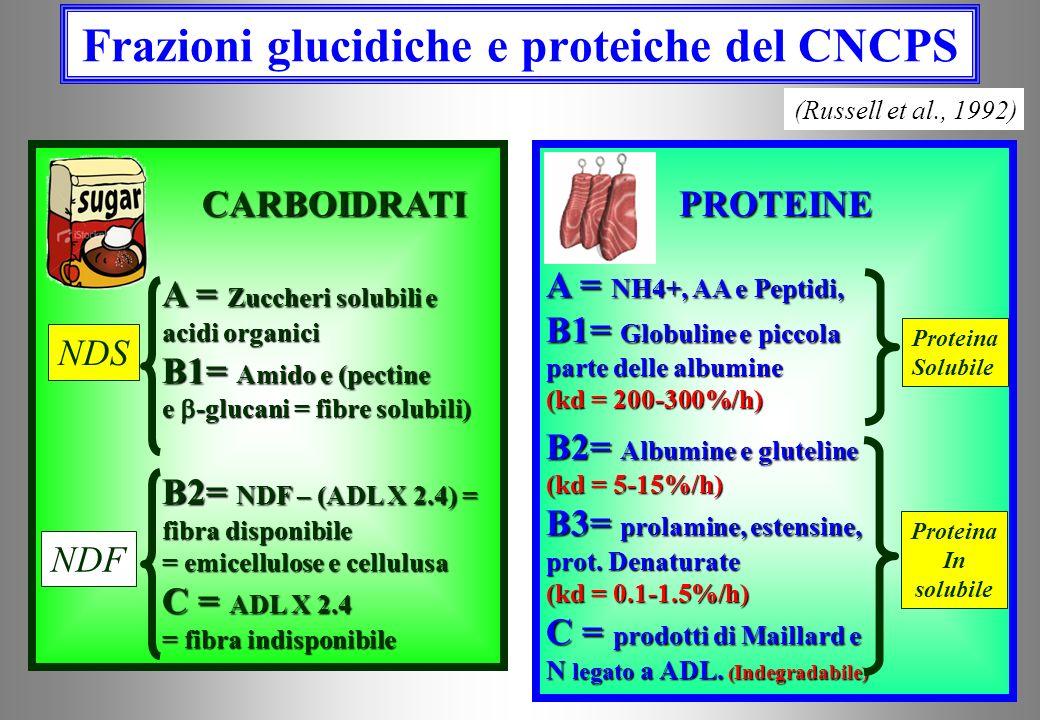 Frazioni glucidiche e proteiche del CNCPS