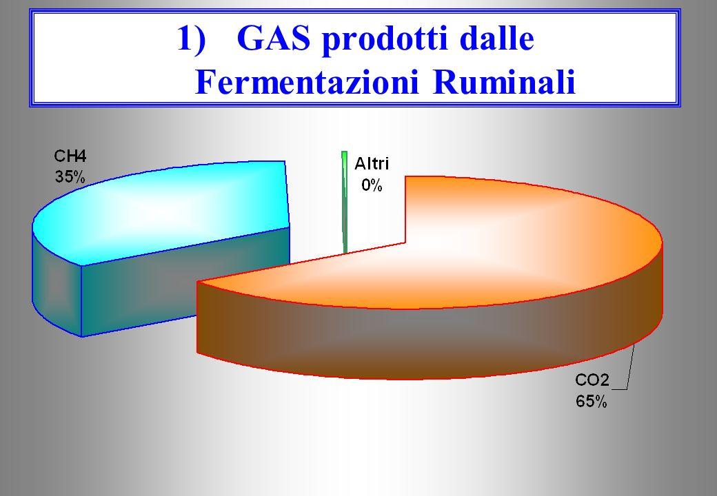 GAS prodotti dalle Fermentazioni Ruminali