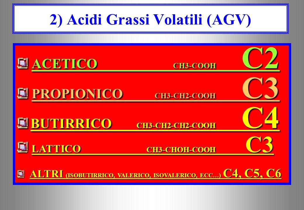 2) Acidi Grassi Volatili (AGV)