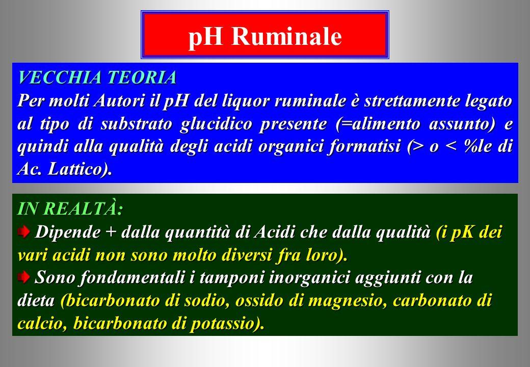 pH Ruminale VECCHIA TEORIA