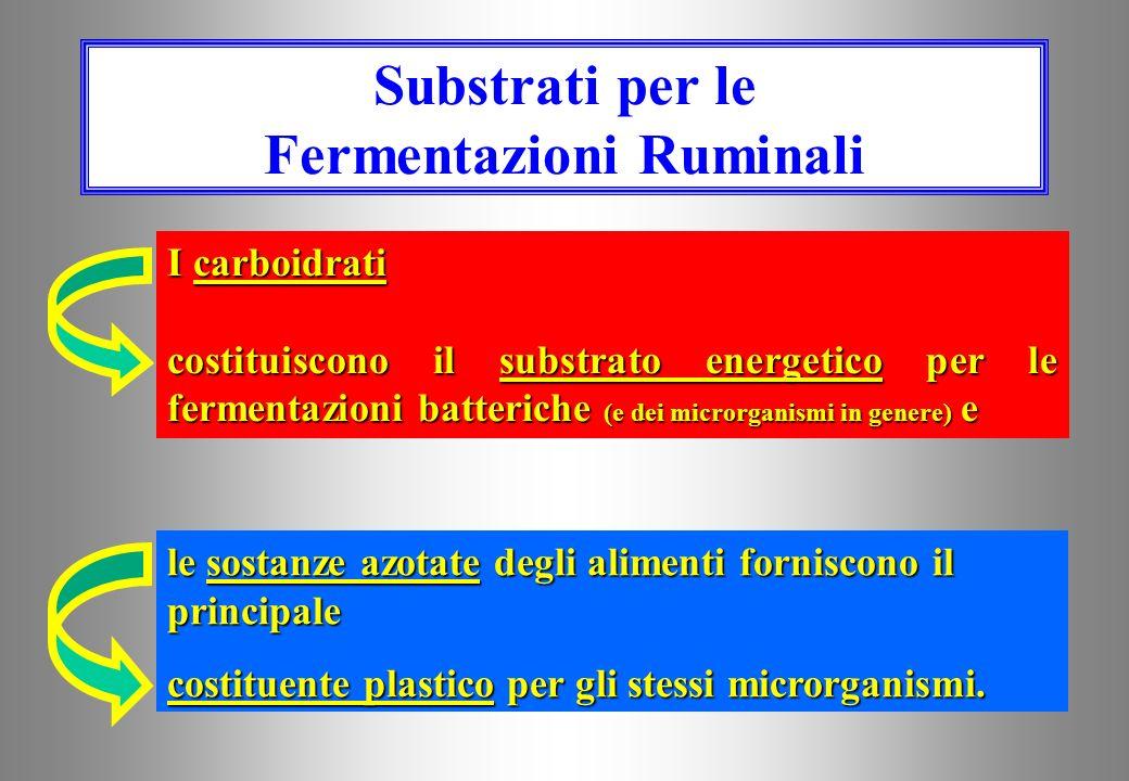 Substrati per le Fermentazioni Ruminali