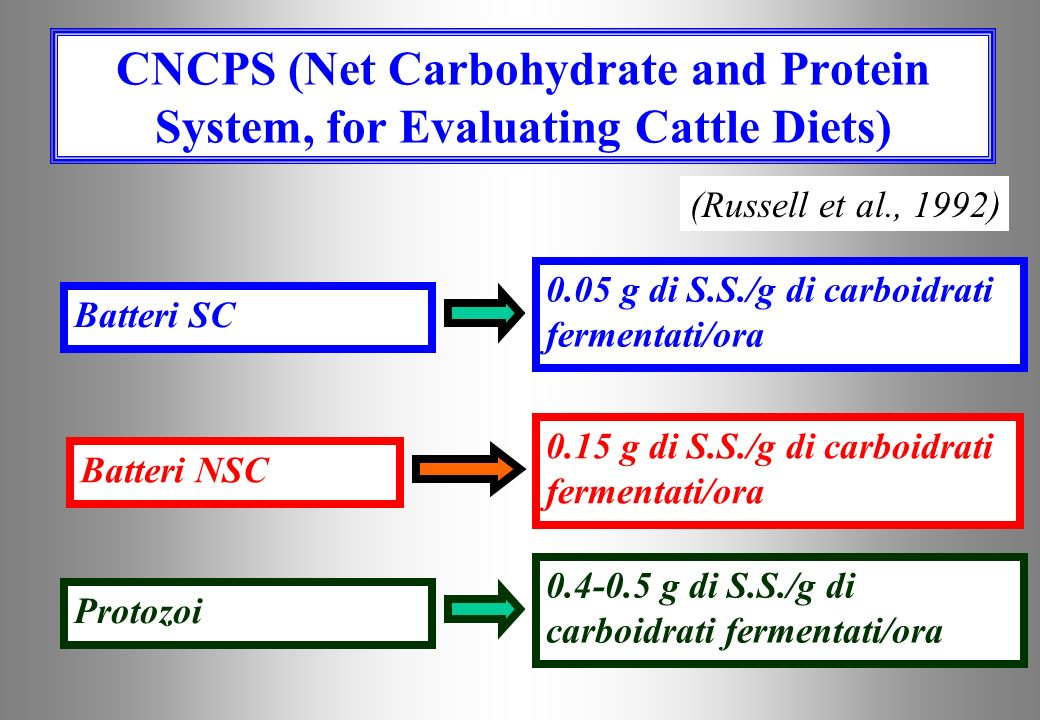 CNCPS (Net Carbohydrate and Protein System, for Evaluating Cattle Diets)
