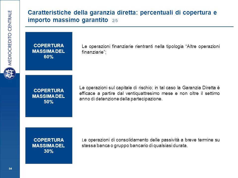Caratteristiche della garanzia diretta: percentuali di copertura e importo massimo garantito 2/5