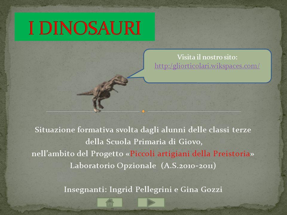 I DINOSAURI Visita il nostro sito: http:/gliorticolari.wikspaces.com/ Situazione formativa svolta dagli alunni delle classi terze.