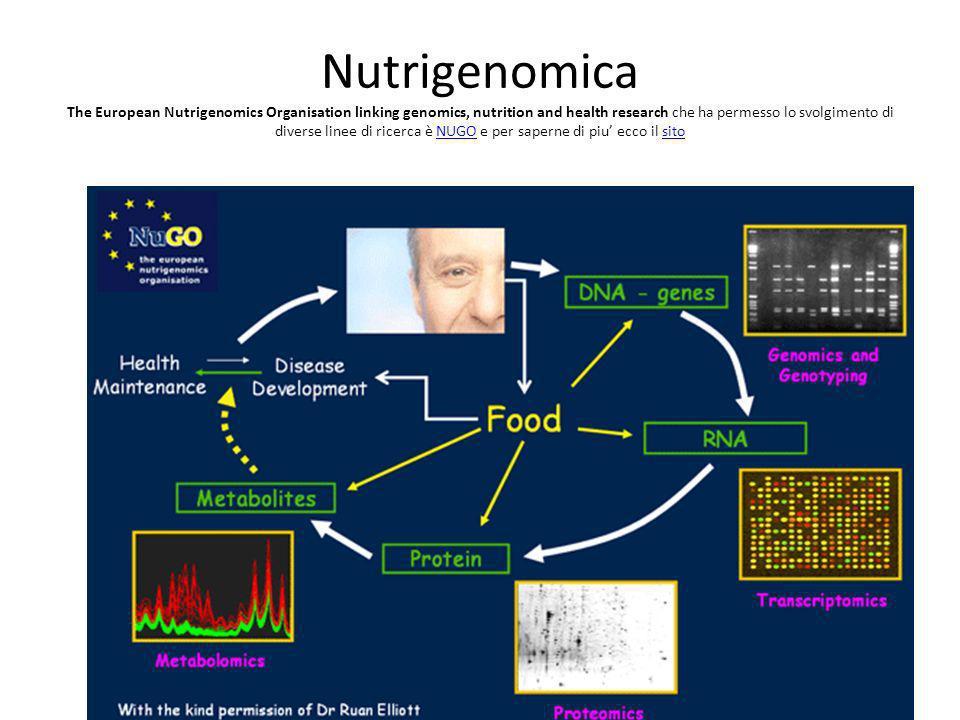 Nutrigenomica The European Nutrigenomics Organisation linking genomics, nutrition and health research che ha permesso lo svolgimento di diverse linee di ricerca è NUGO e per saperne di piu' ecco il sito