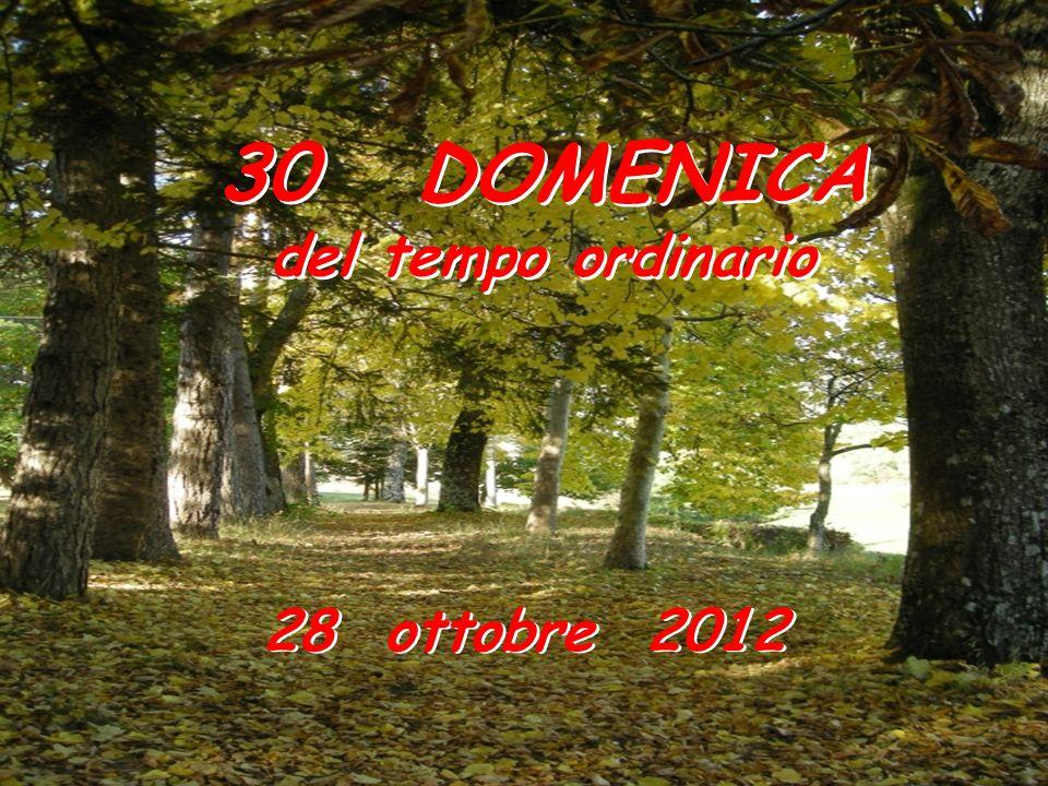 30 DOMENICA del tempo ordinario 28 ottobre 2012