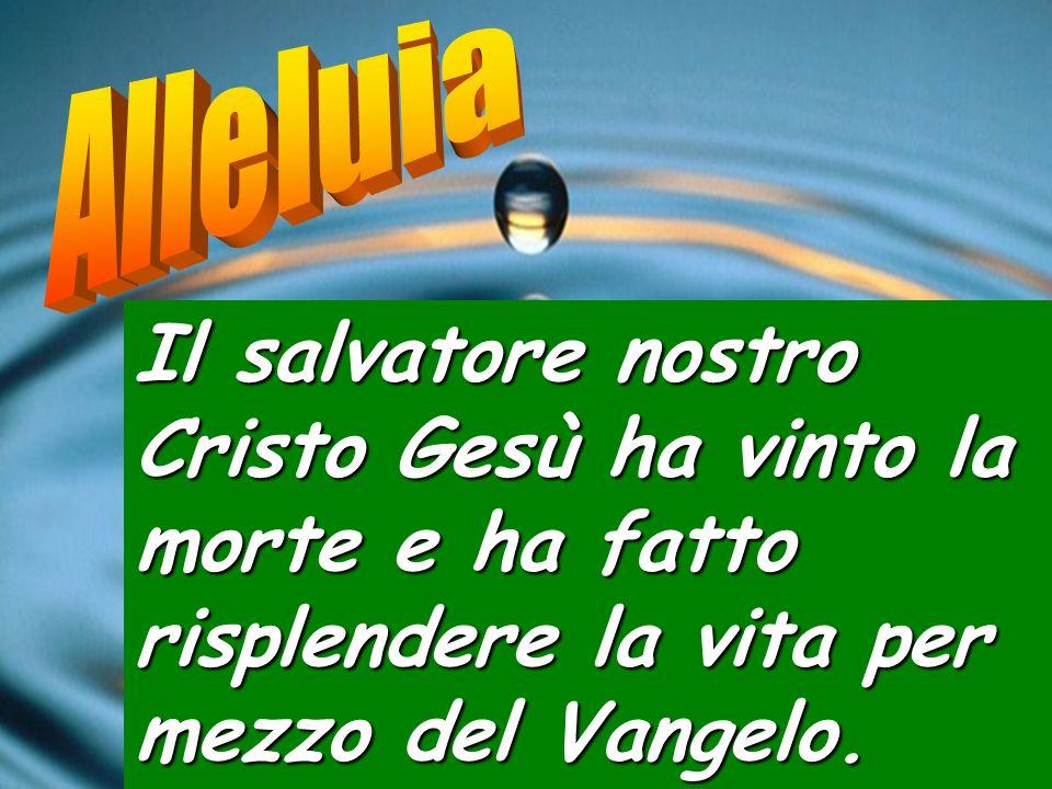 Alleluia Il salvatore nostro Cristo Gesù ha vinto la morte e ha fatto risplendere la vita per mezzo del Vangelo.