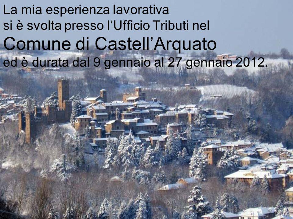 La mia esperienza lavorativa si è svolta presso l'Ufficio Tributi nel Comune di Castell'Arquato ed è durata dal 9 gennaio al 27 gennaio 2012.