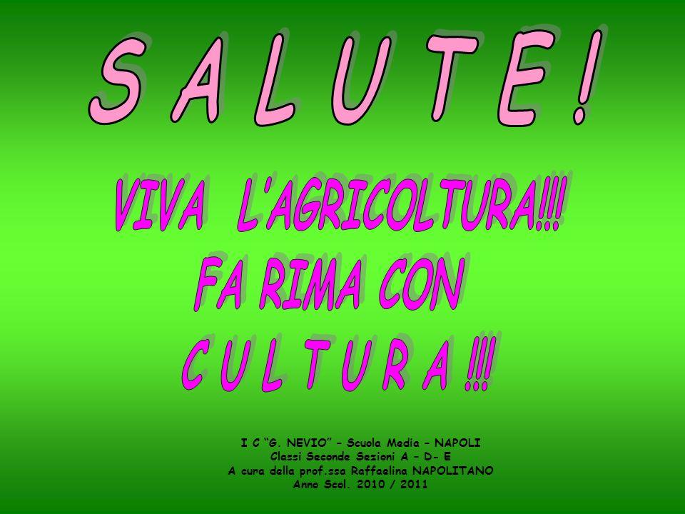 S A L U T E ! VIVA L'AGRICOLTURA!!! FA RIMA CON C U L T U R A !!!