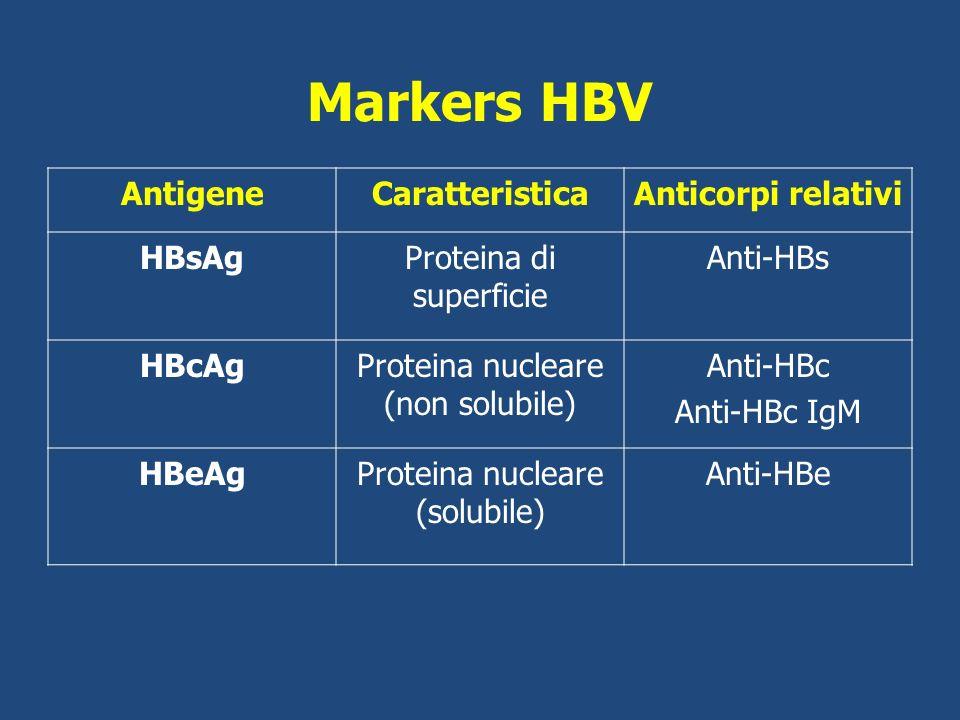 Markers HBV Antigene Caratteristica Anticorpi relativi HBsAg