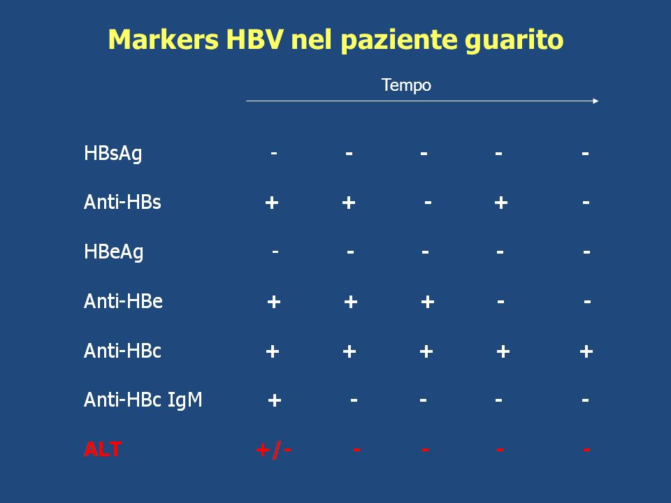 Markers HBV nel paziente guarito Tempo