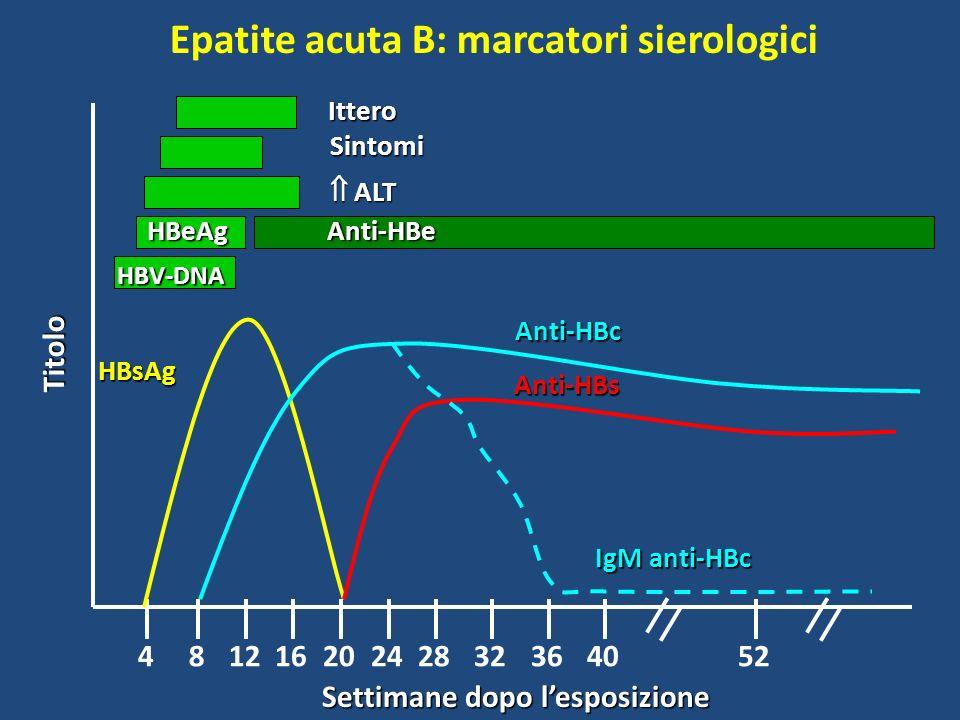 Epatite acuta B: marcatori sierologici