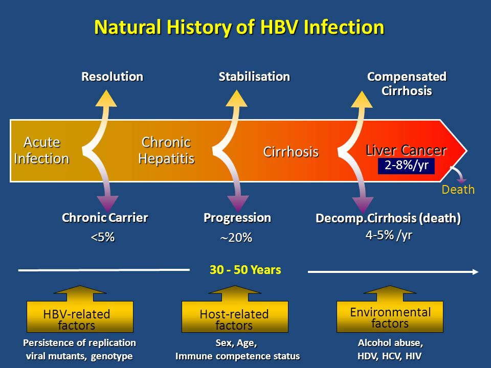 Natural History of HBV Infection