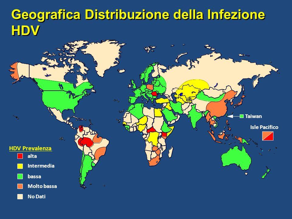Geografica Distribuzione della Infezione HDV