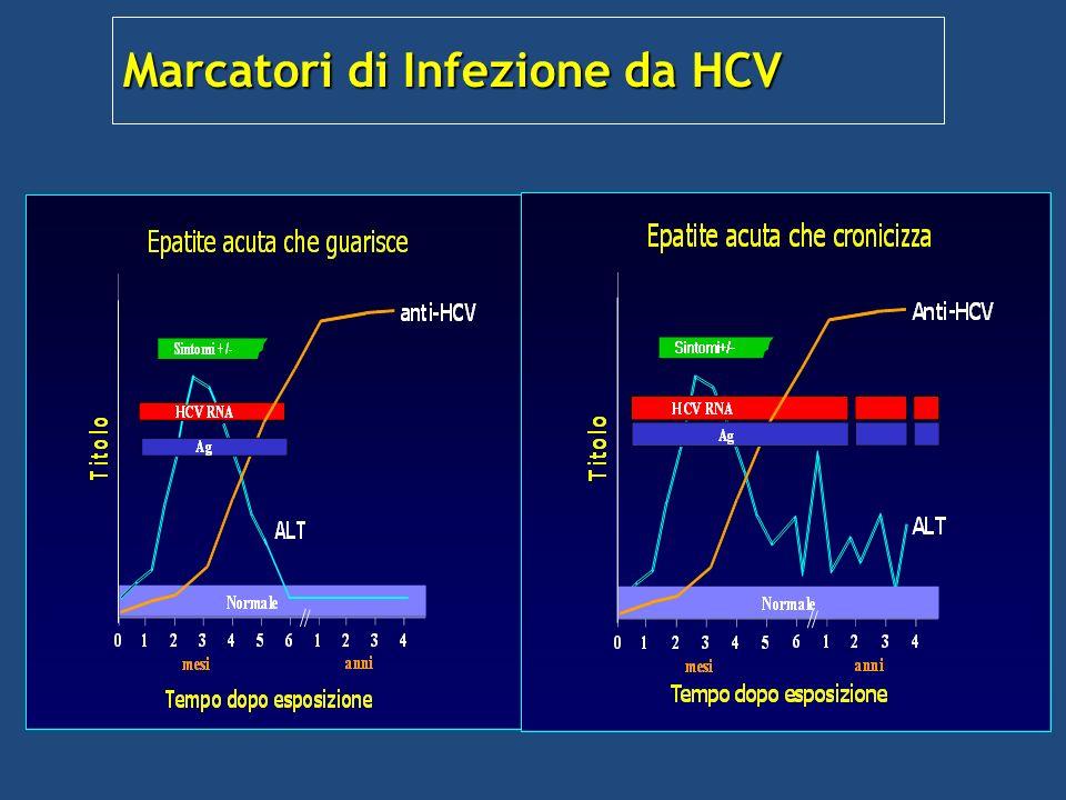 Marcatori di Infezione da HCV