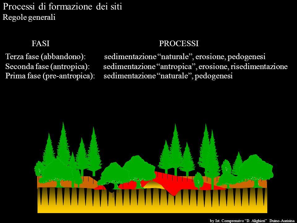 Processi di formazione dei siti