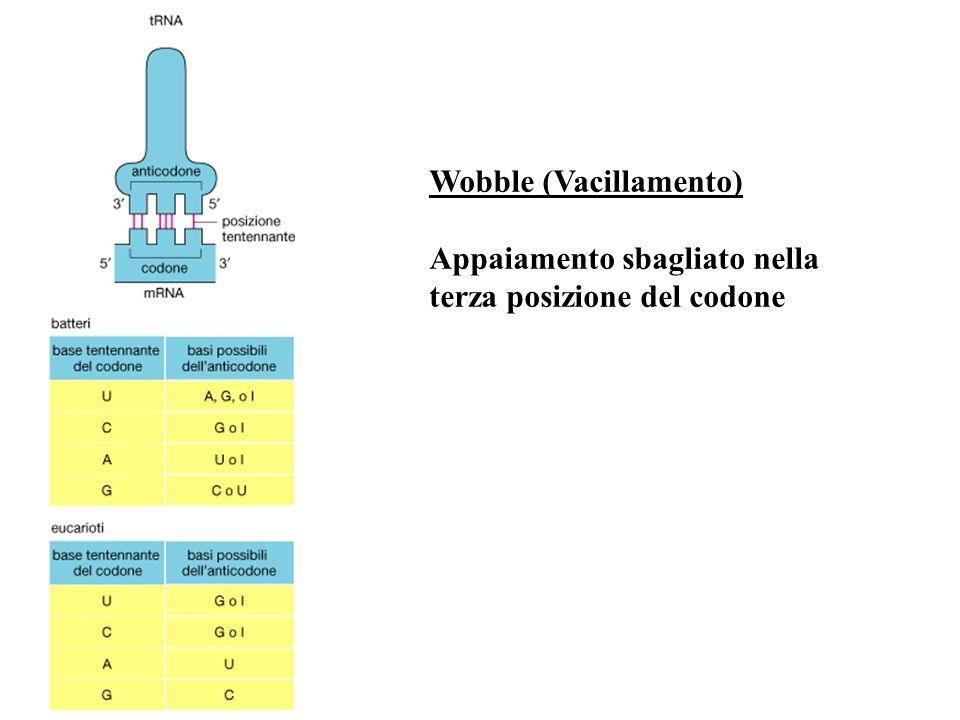 Wobble (Vacillamento)