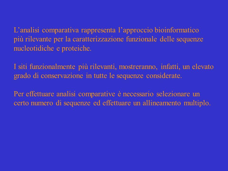 L'analisi comparativa rappresenta l'approccio bioinformatico