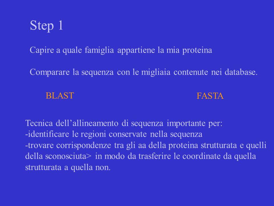 Step 1 Capire a quale famiglia appartiene la mia proteina