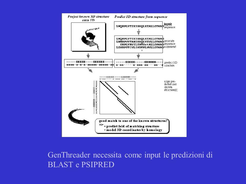 GenThreader necessita come input le predizioni di