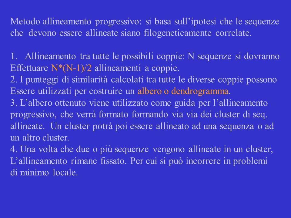 Metodo allineamento progressivo: si basa sull'ipotesi che le sequenze