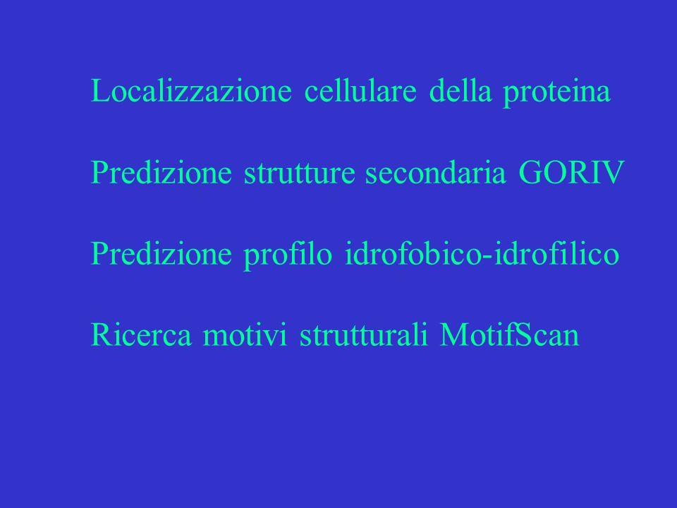 Localizzazione cellulare della proteina