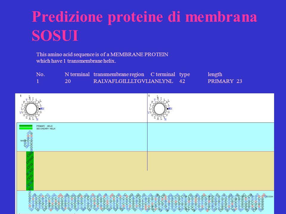 Predizione proteine di membrana SOSUI