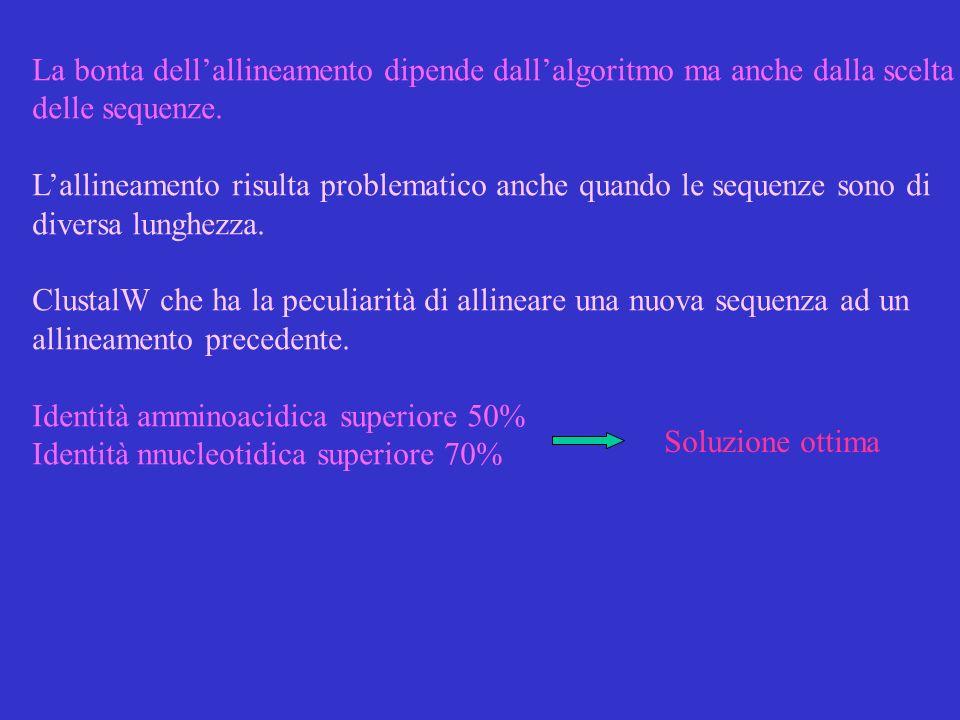 La bonta dell'allineamento dipende dall'algoritmo ma anche dalla scelta