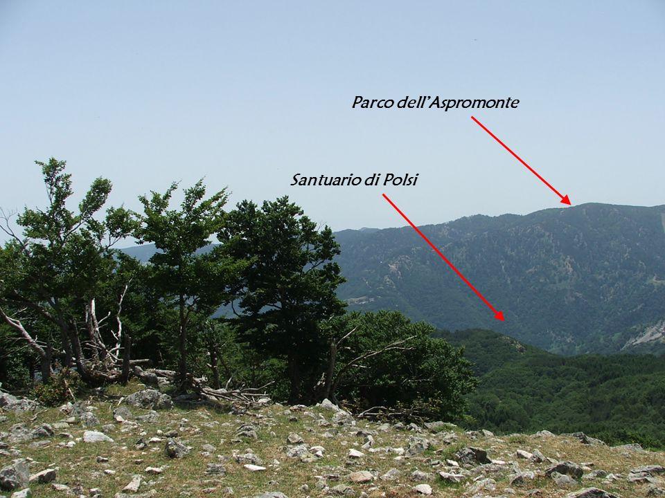 Parco dell'Aspromonte