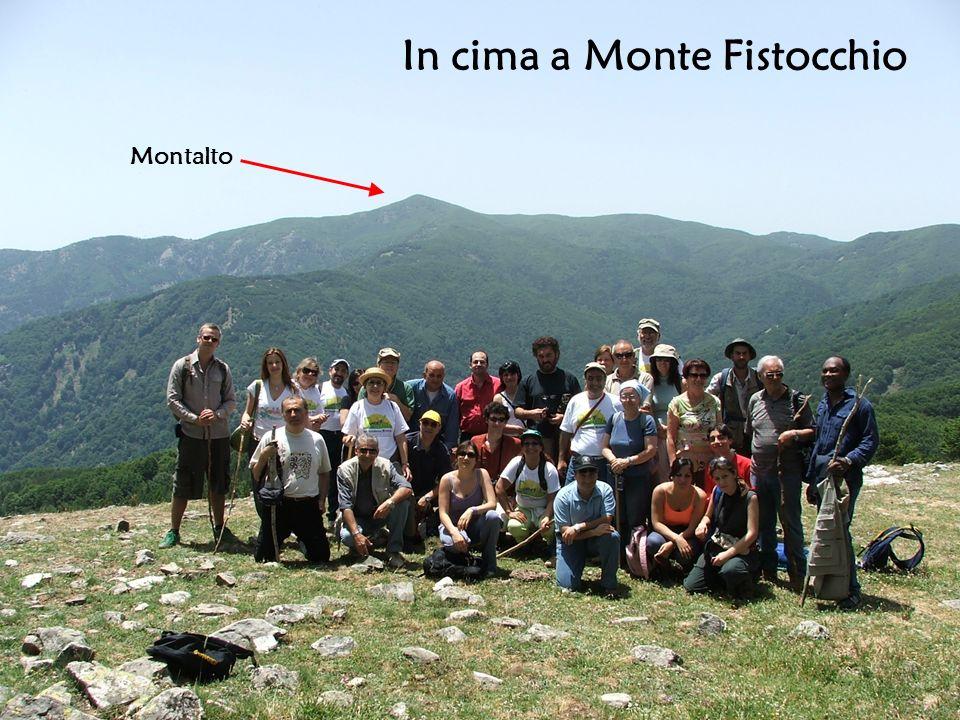 In cima a Monte Fistocchio