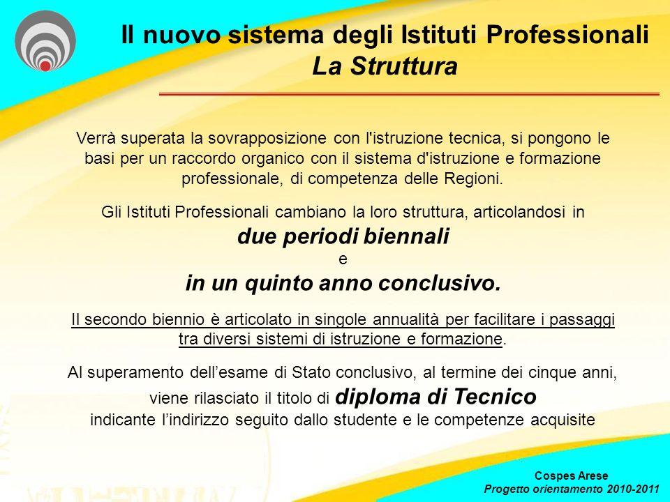 Il nuovo sistema degli Istituti Professionali La Struttura