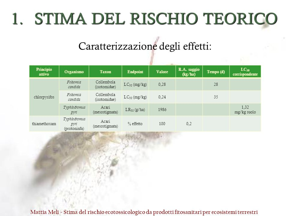 STIMA DEL RISCHIO TEORICO