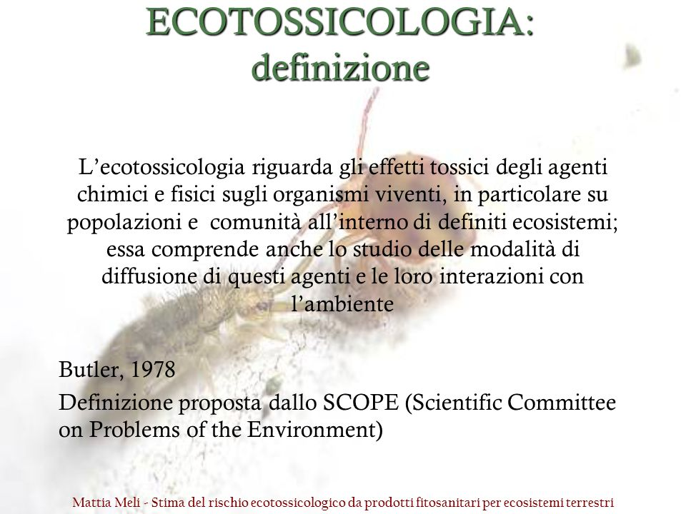 ECOTOSSICOLOGIA: definizione