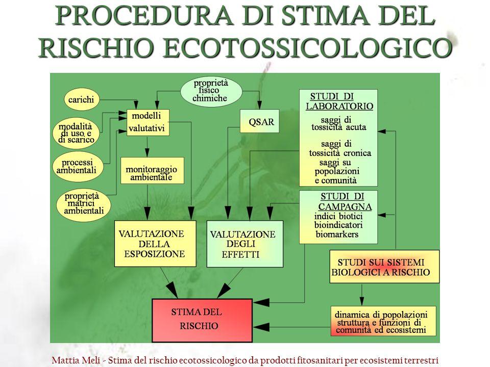PROCEDURA DI STIMA DEL RISCHIO ECOTOSSICOLOGICO